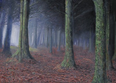 Welsh Wood