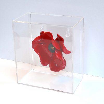 Poppy in Acrylic Box