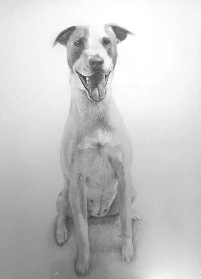 finished lizzie dog portrait