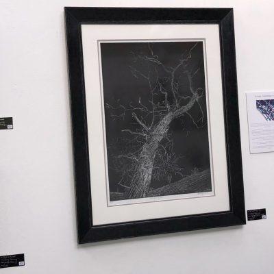 Ironbridge Fine Art Exhibition - Jenny Gunning
