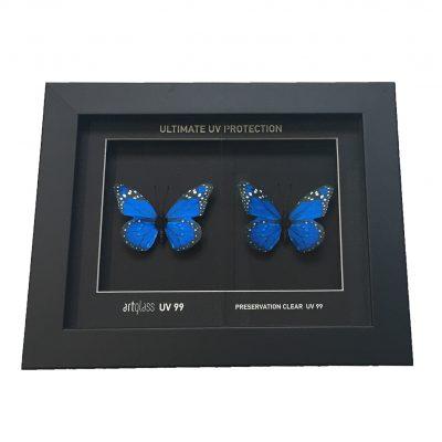 UV99 Protection Frame