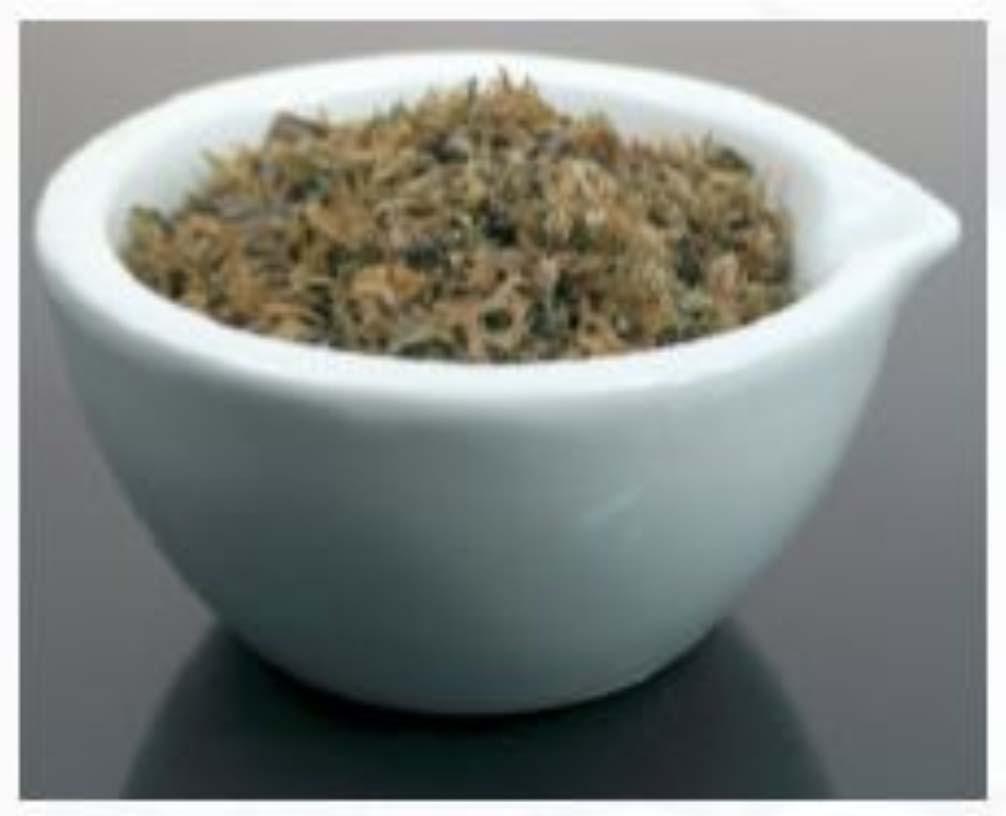 Carrageen Moss - Shredded
