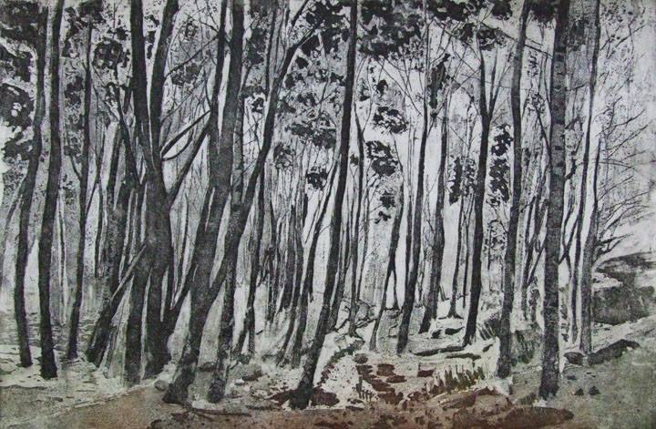 Through the Trees by Linda Samuel