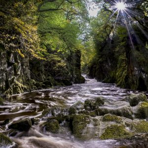 Fairy Glen by David Jones