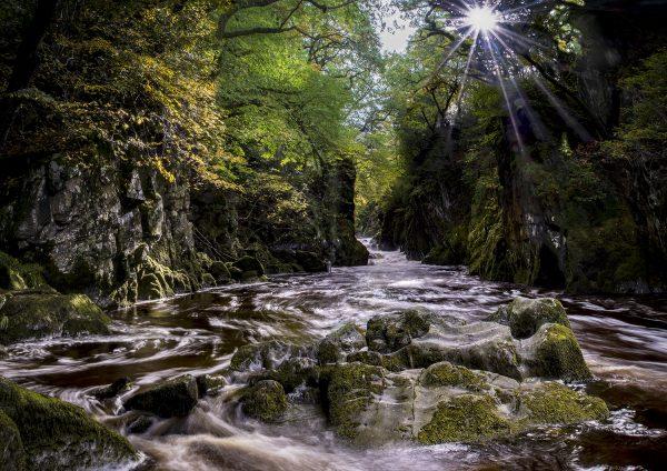 Fairy Glen by David Jones