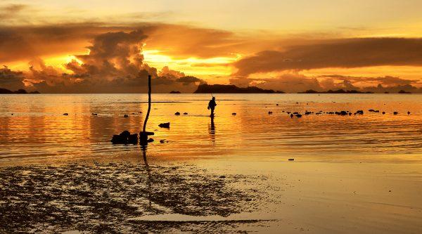 Fisherman's sunset