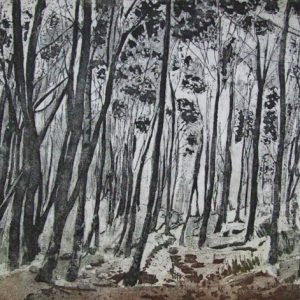 Linda Nevill 'Through the Trees'