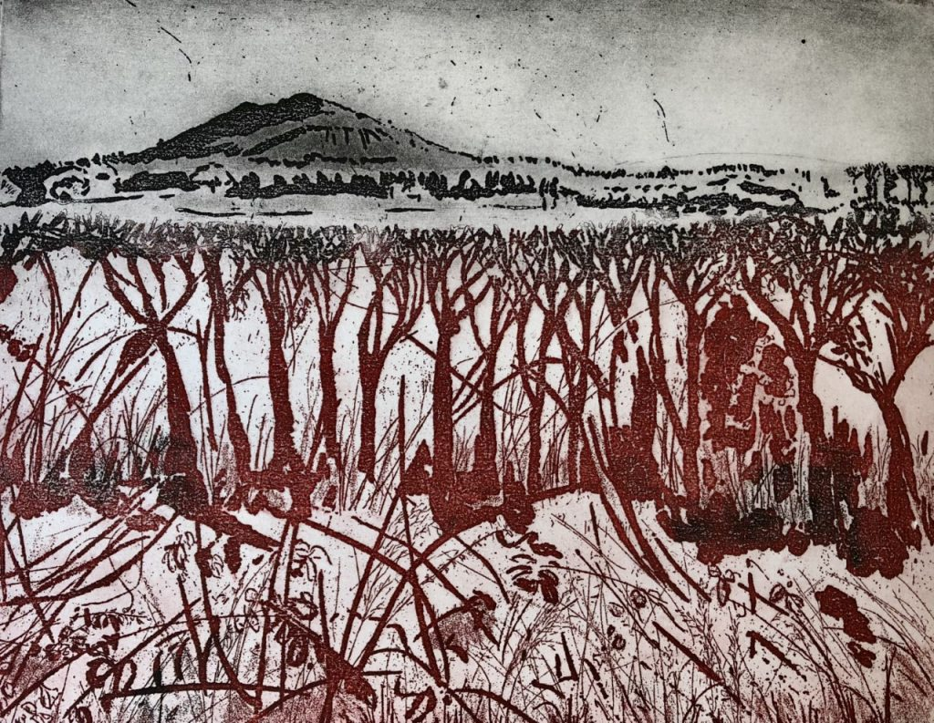 Linda Nevill 'From Hedgerow to Hillside'