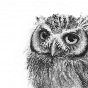 Charcoal and Ink by Jades Coldicott