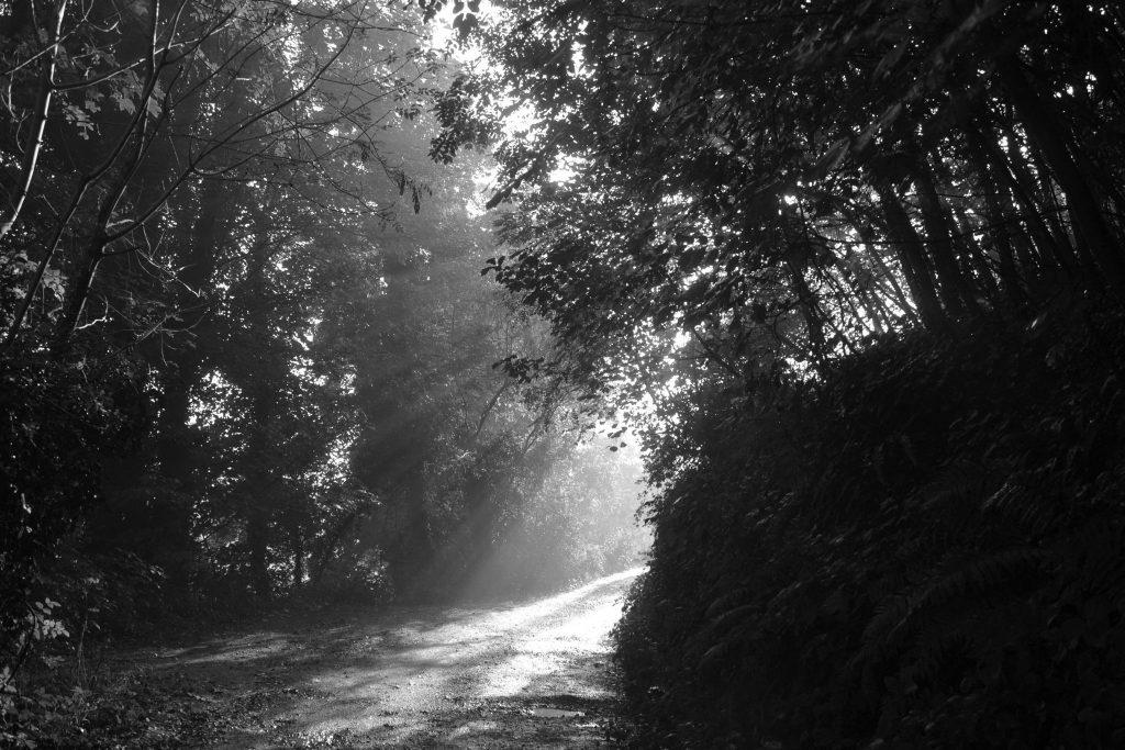 Sarah-Morris-shropshire-photography