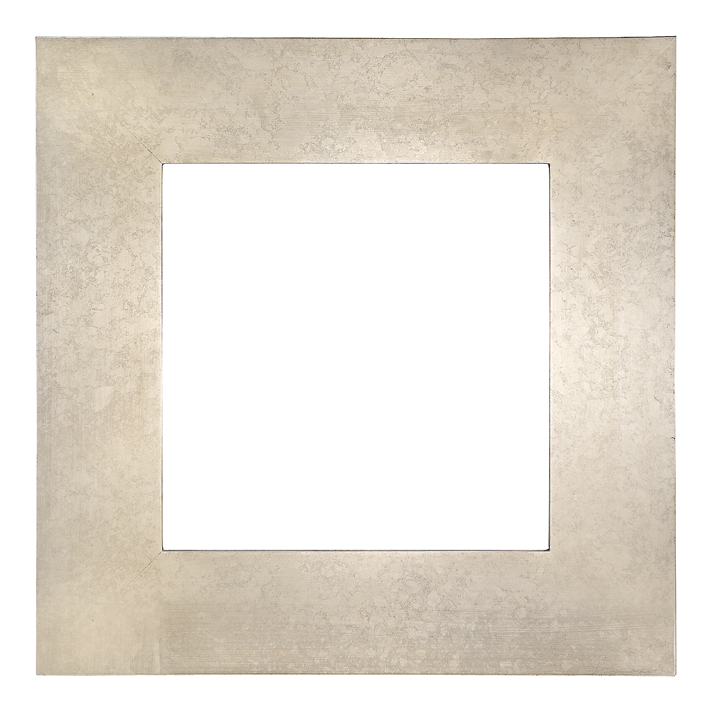 Silver or Gold Leaf Flat Profile Standard Frame
