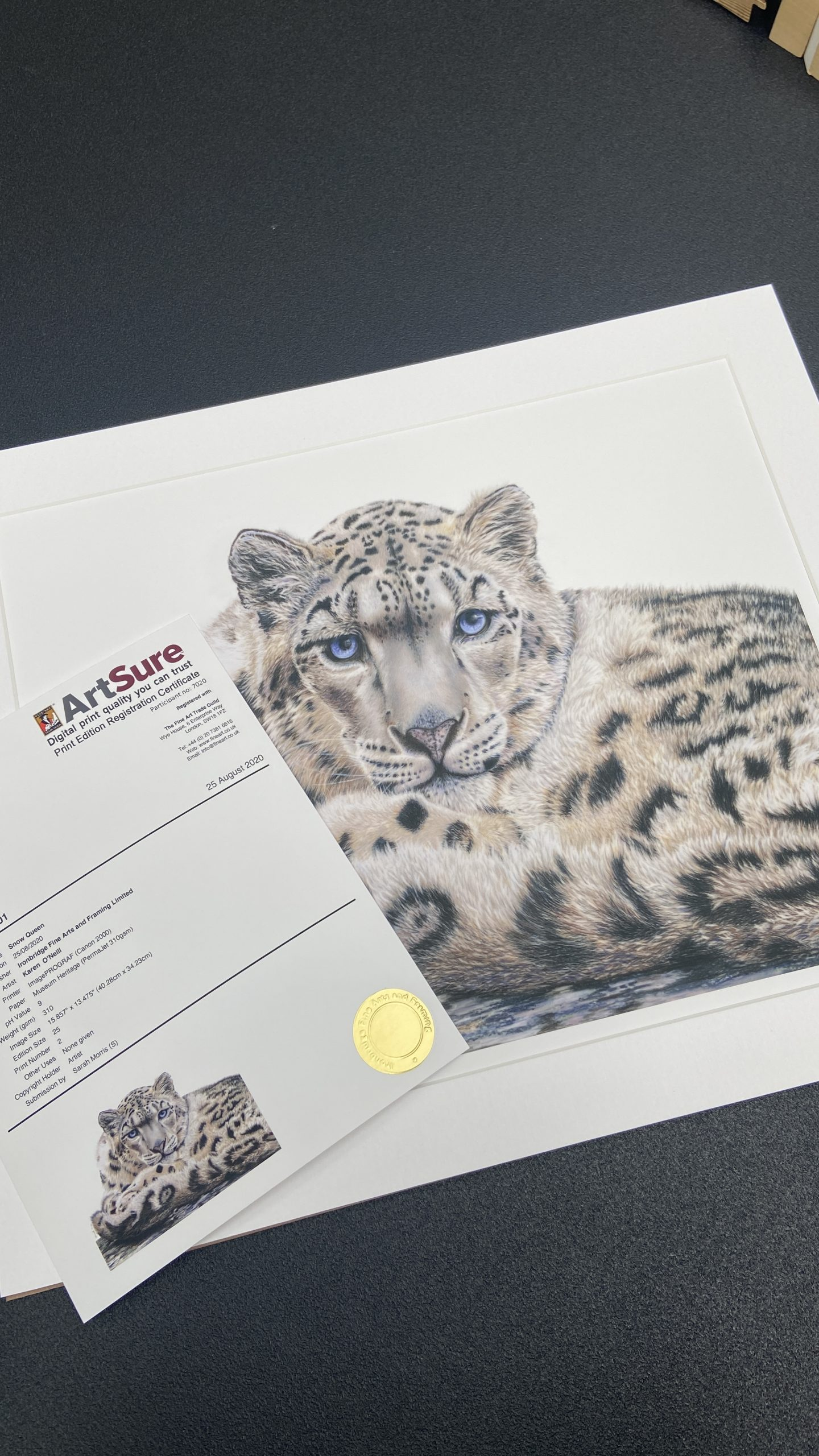 Example of Giclee Printing and Art Sure Certificate