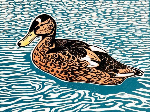 Sarah Delahoy Lonesome Duck
